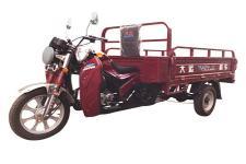 大运DY175ZH-10F型正三轮摩托车图片