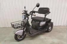 三安牌SA500DQZ型电动正三轮轻便摩托车图片