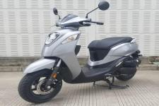 新大洲—本田牌SDH110T-8B型两轮摩托车图片