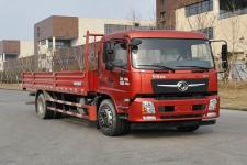东风牌DFV1173GP6D型载货汽车图片