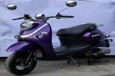 东方牌DF125T-8S型两轮摩托车图片
