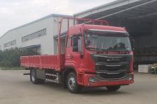 江淮牌HFC1161P3K2A50S型载货汽车图片