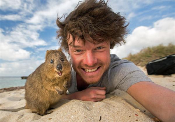 动物、孩子和水号称电影界三大最难拍摄的元素,因为他们不可控。所以,如果能让小动物们和你一起拗造型自拍,那才是自拍界的翘楚。据赫芬顿邮报28日报道,外国就有一哥儿们,一边环游世界,一边和小动物自拍。他不仅能让小动物们愿意和他自拍,还能哄得它们十分开心地对着镜头拗造型,照片中的小动物们都十分有镜头感,萌化了 来个美美的笑脸~ 这哥儿们叫艾伦迪克(Allan Dixon),是个探险者,他从澳大利亚到爱尔兰,沿途一直致力于与各种小动物自拍。这么和谐的照片要拍出来可不容易,小动物们警惕性都很强,为了哄它们来拍照